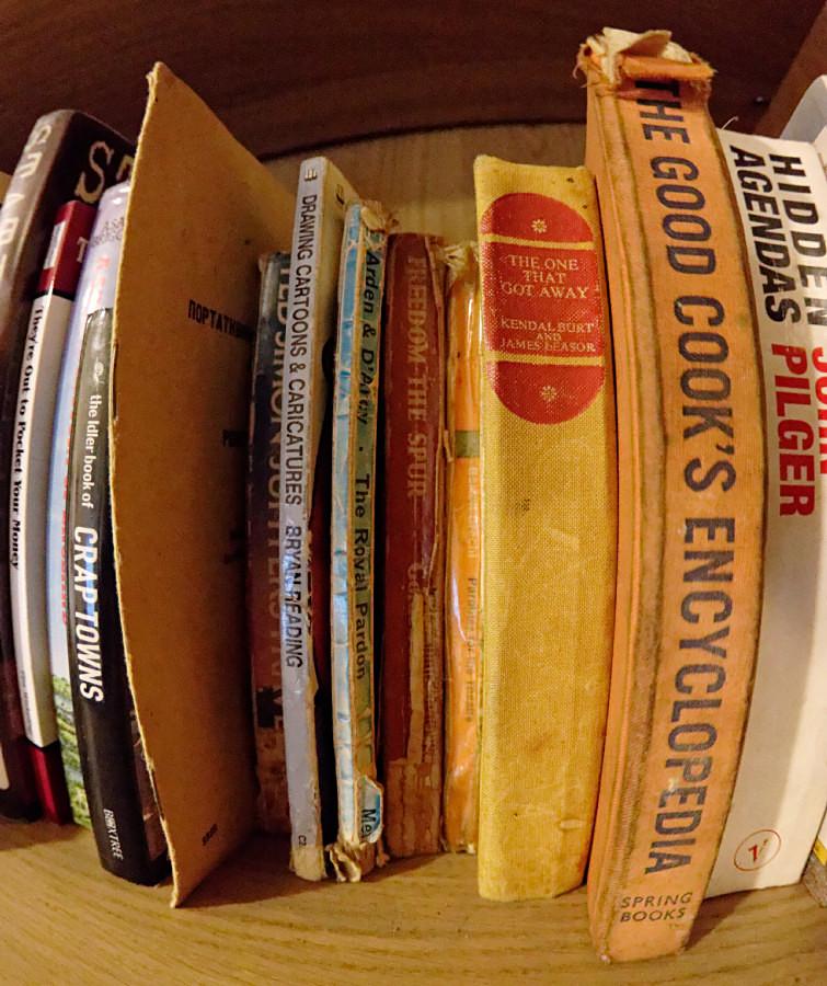 Bookshelves unsorted