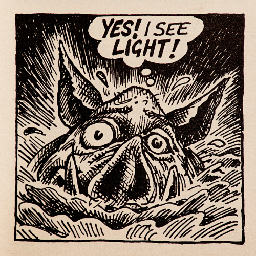 Drain Pig sees the light