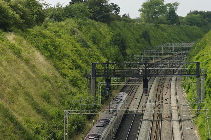 Tring Railway Cutting from Folly Bridge