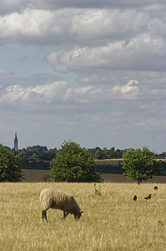Hanslope church from Old Wolverton
