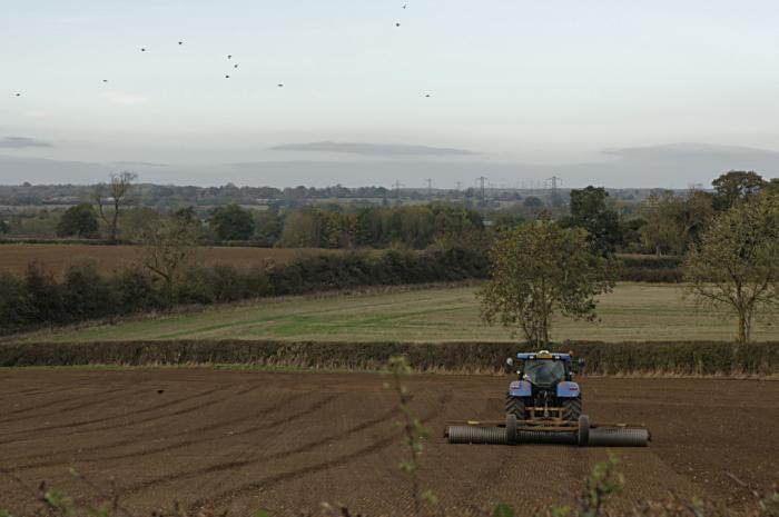 Farming near Padbury