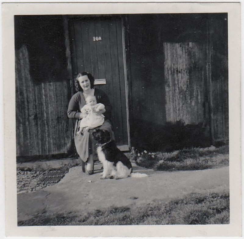 Westcott 1959