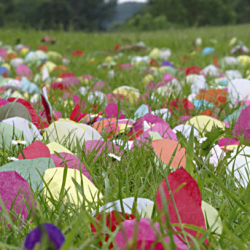 Paper lotus petals
