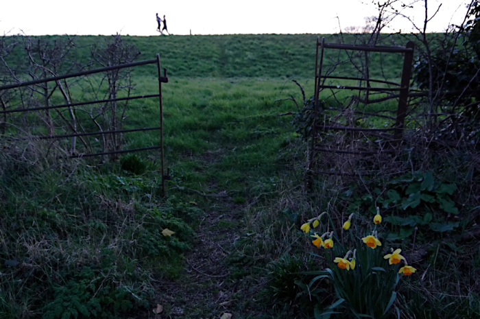 Kissing gate on old footpath
