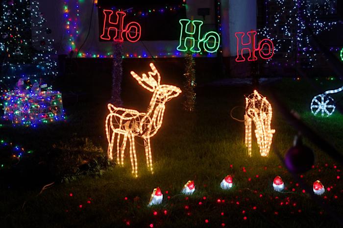 Ho ho ho and reindeer