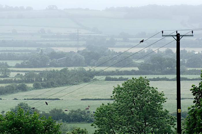 11kv lines  Aylesbury Vale
